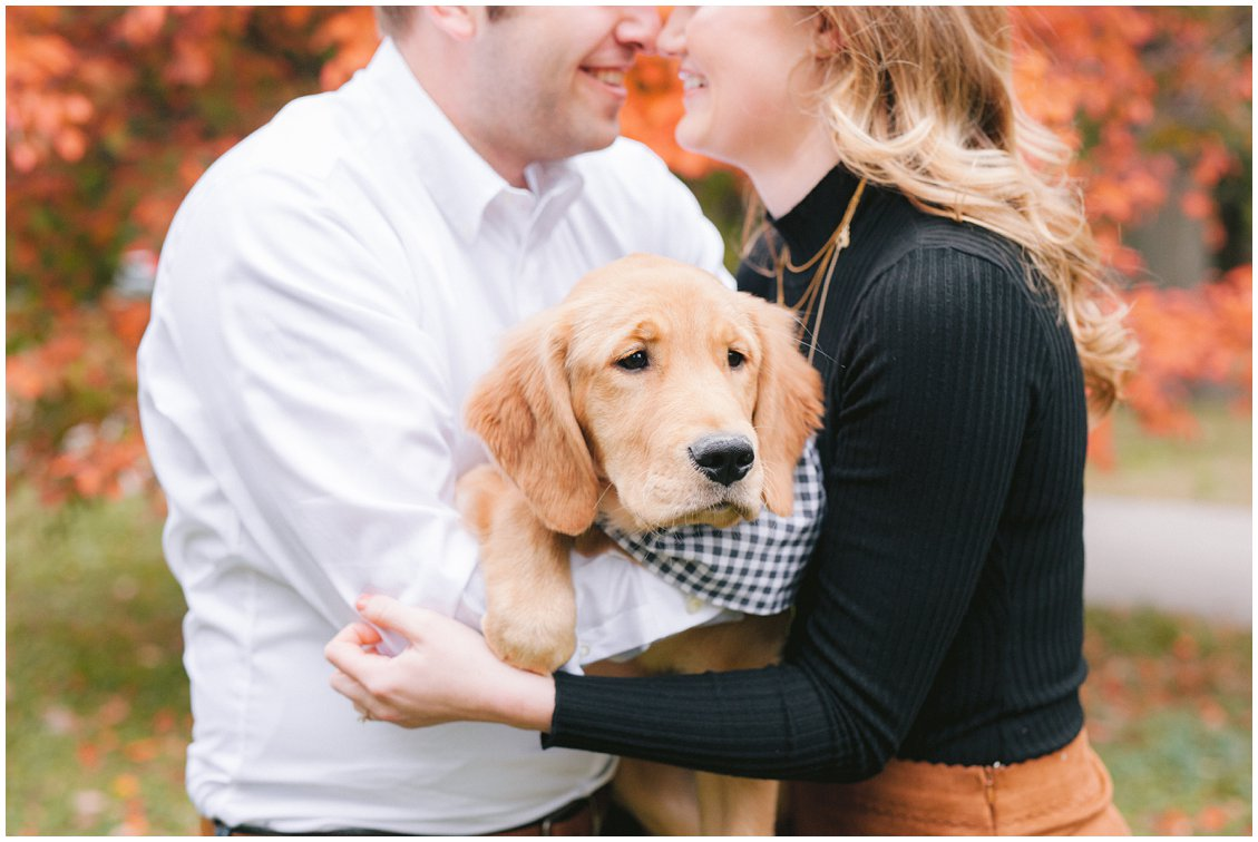 Golden Retriever Puppy at a St Louis Fall Engagement Session by Pattengale Photography